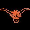 BIIH - Bulls